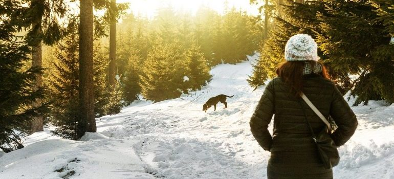 Choosing a pet friendly neighborhood: woman walking dog on a snow-covered trek