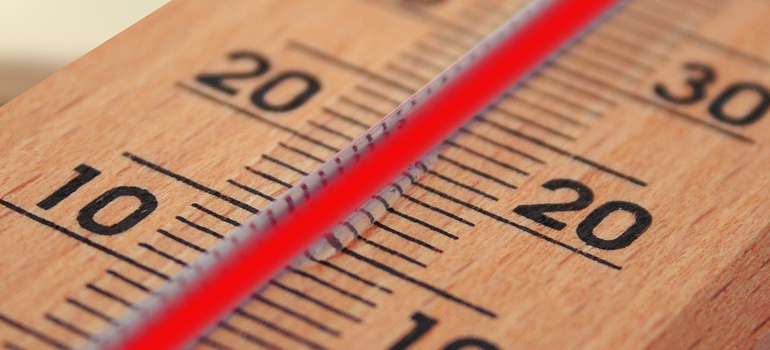 Thermometer you can use when you want to relocate an indoor garden